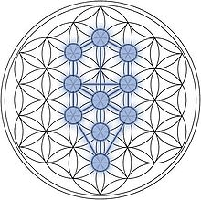Flower of Life Kabbalah Tree of Life Kabbalistic Journey